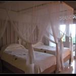 (2007巴里島小差旅) 第一天@Uma Ubud . Bali