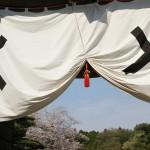 200804お花見@東北Day 2:白石川堤一目千本櫻&二本松城(下)