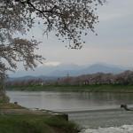 200804お花見@東北Day 2:白石川堤一目千本櫻&二本松城(上)