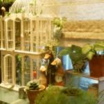 (20100828生活小記) 窗邊的小花園