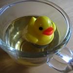 (買物) 癒療系小物:漂浮小鴨濾茶網