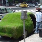 充滿綠意的草皮車
