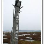(( 北海道租車遊 ))之4 ~ 紅紅相連到天邊@能取湖サンゴ草(珊瑚草)
