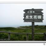 (( 北海道租車遊 ))之6 ~ 季節不對@小清水原生花園