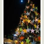 [2007耶誕‧清境] Merry Christmas
