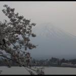 千呼萬喚始出來:9404東京‧河口湖之旅照片