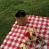 2014年春末野餐會